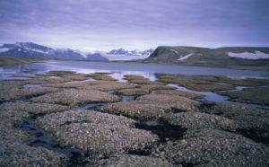 Il Permafrost cede e sta liberando metano