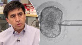 DNA di embrioni umani modificati geneticamente per prevenire malattia ereditaria