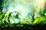 Gli scenari per decarbonizzare l'economia