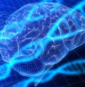 Nuove scoperte sull'atrofia muscolare spinale