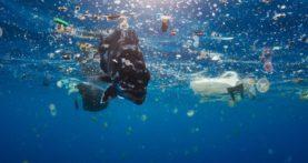 Plastic Radar – La plastica monouso inquina i mari – di Coca Cola, Nestlè, San Benedetto le presenze più significative