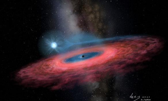 LB1 - Il buco nero che non dovrebbe esistere