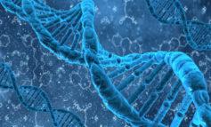 Il DNA per prevenire l'insorgenza di malattie degenerative