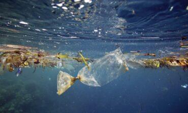 Microfibre tessili nei mari - L'8% è sintetico